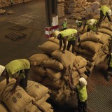 Sorting cocoa that has arrived from farms across the Ivory Coast. The country produces 30% of the worlds cocoa.